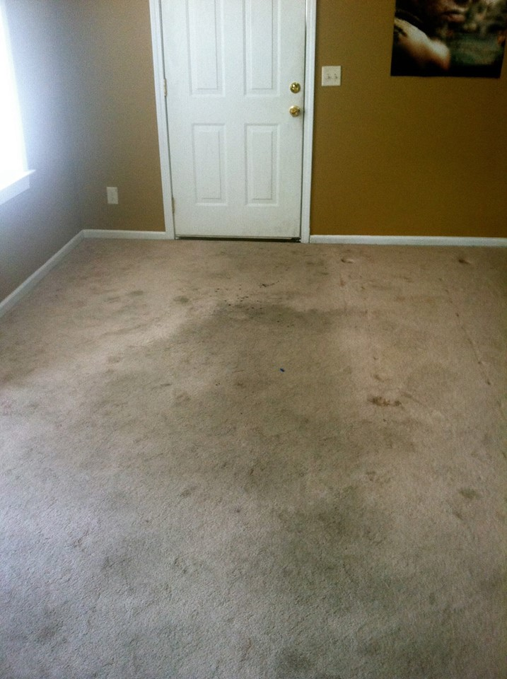Xtreme Dry Carpet Cleaning Before 2